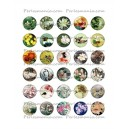 Collage Digital Nature retro Rond 18mm