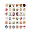 Collage Nature B 25 par 18mm ALM