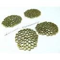 10 pièces VO Racine de lotus G25
