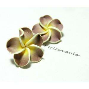 2 fleurs cabochons marron jaune fimo ref 2G3127 25mm