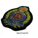 Apprêt mercerie 1 grand patch thermocollant embleme blason university ref139